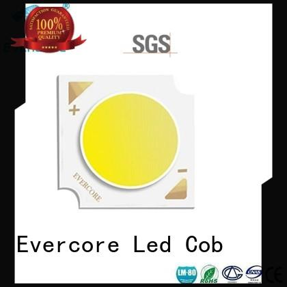 Hot automotive lighting cobs modules optical design Evercore Brand