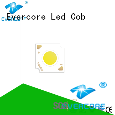 Evercore best smd led chip Asia company for sale