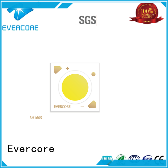 Evercore bh1311 downlight cob customized for distribution