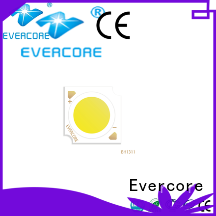 Evercore bh1816 downlight cob factory for sale