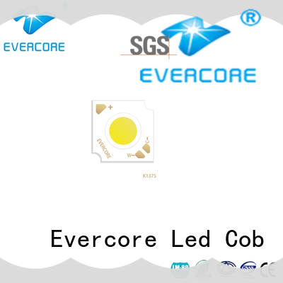 Evercore easy installation led color supplier for distribution