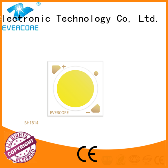 Evercore ra97 led downlight kit factory for distribution