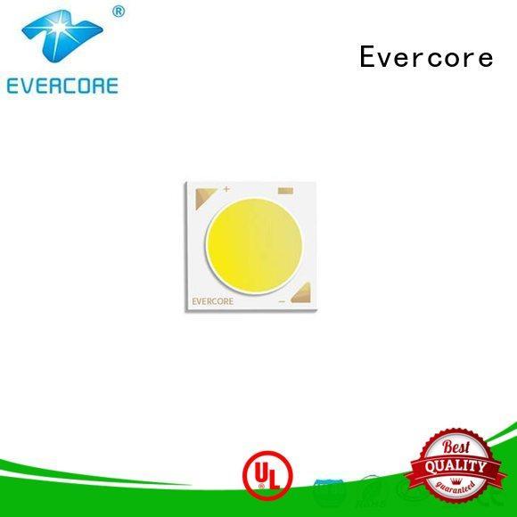 Evercore bk1917 color led manufacturer for sale
