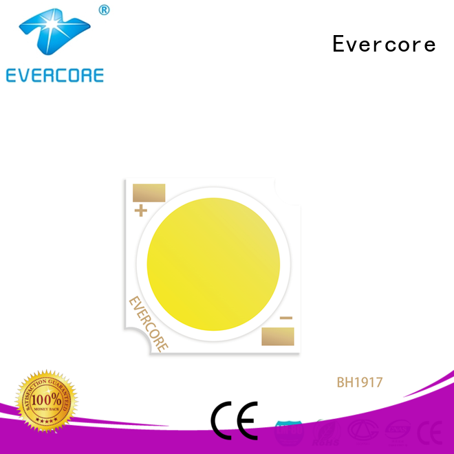 Evercore bh1311 led downlight kit factory for distribution