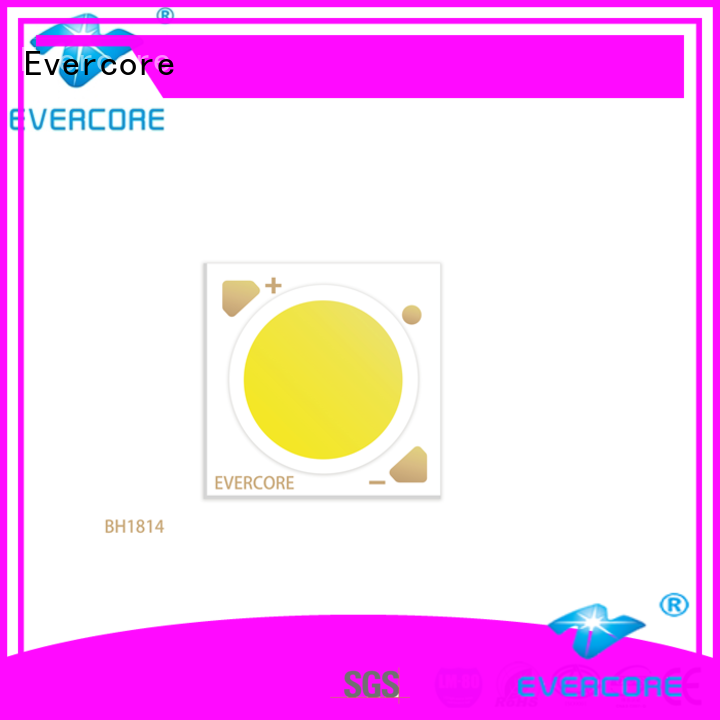 Evercore bh1311 led downlight kit customized for market