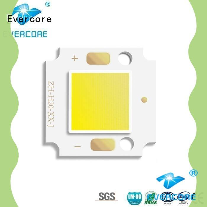 tunnel quality cob led manufacture oh2011 for distribution Evercore