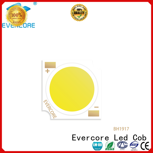 Evercore Low cost Cob Led supplier for lighting