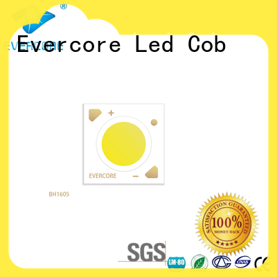 advanced technology downlight cob bh16105 factory for market