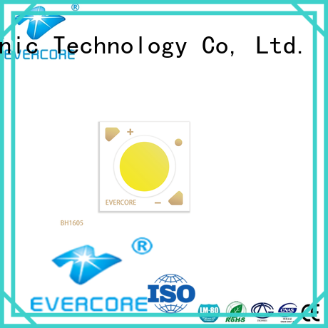 Evercore big production led bulbs for automotive use power for merchant