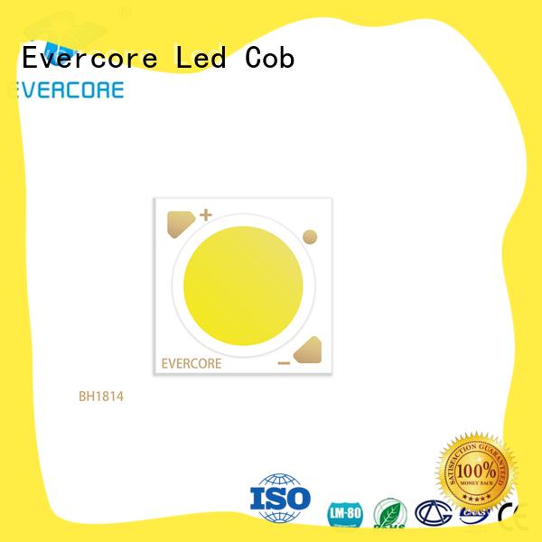 bh16105 led downlight kit customized for market Evercore
