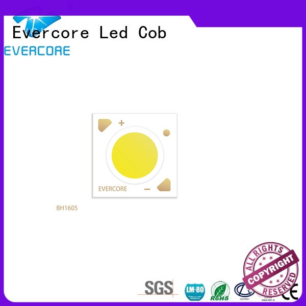 Evercore hot selling cob led for merchant